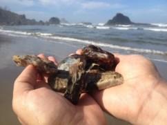 Rockhounding - Indian Beach in Oregon, agates and quartz!